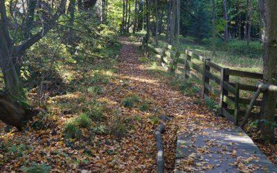 Wrocław ślęża szlaki rowerowe
